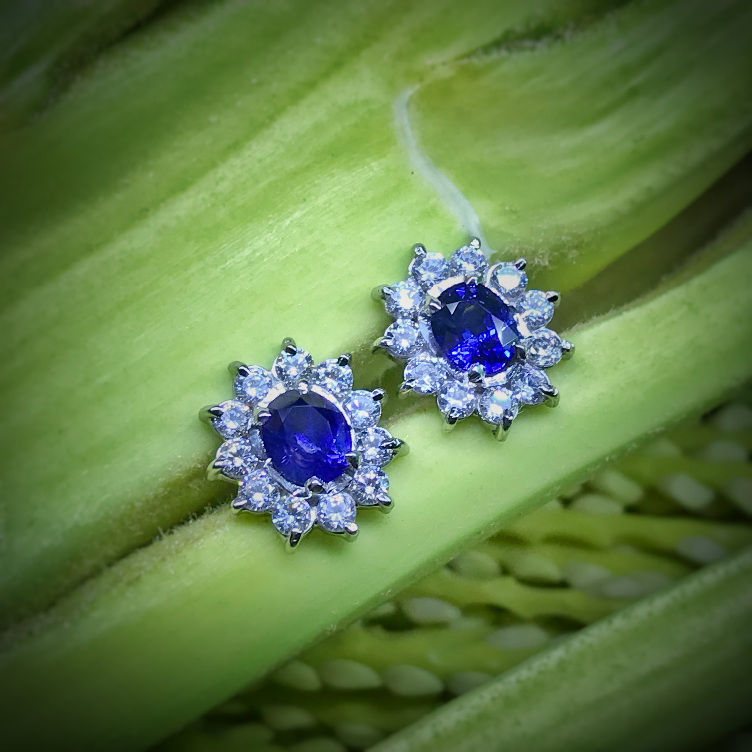 Blue Sapphire Rose Earrings